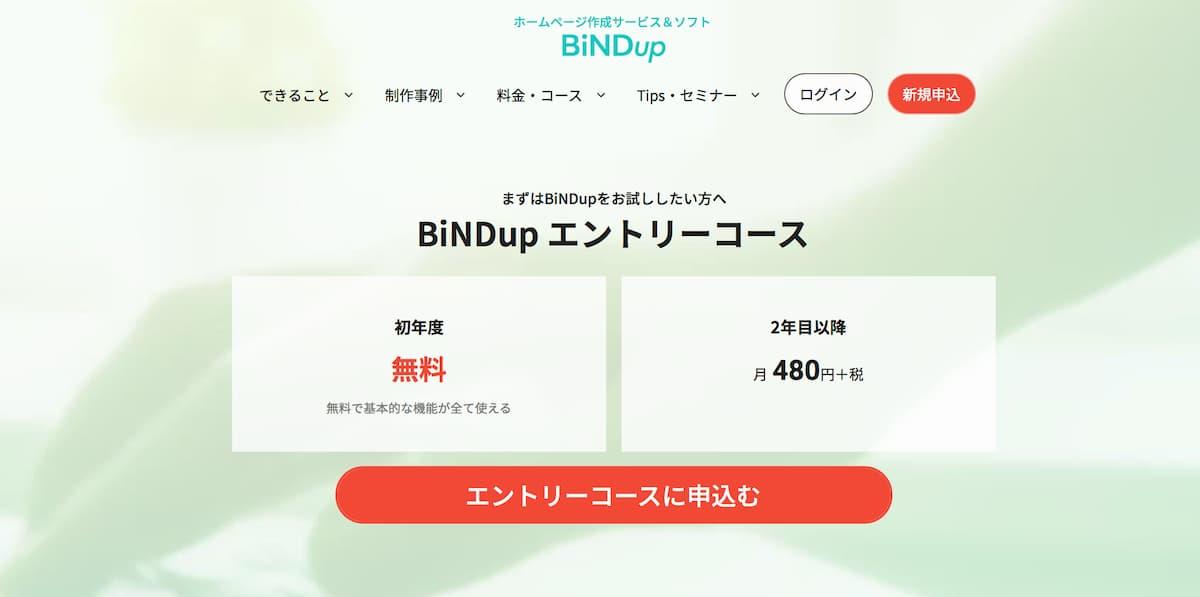 BiNDupのサービスWebサイト