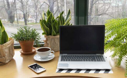 営業がブログを書くための素敵なカフェインテリア