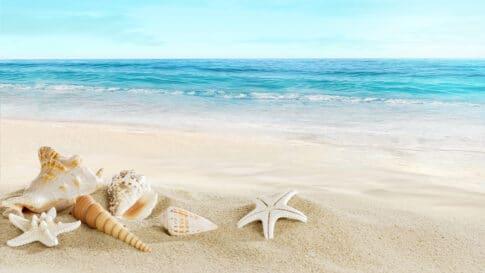 育児ブログで稼げて旅行で素敵な海に行く